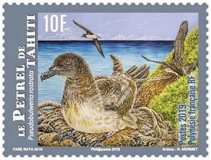 Polynésie Française - Le Petrel