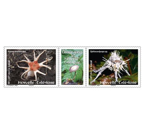 Timbre diptyque Nouvelle Calédonie - Champignons de Nouvelle Calédonie