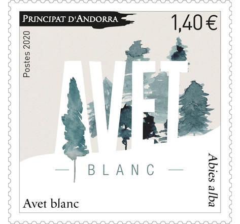 Andorre - Avet Blanc