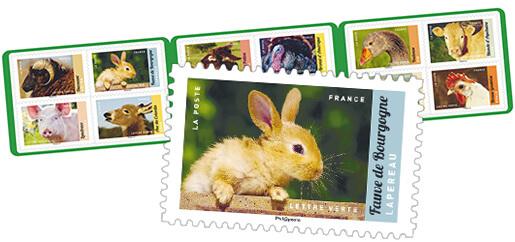 Carnet - Veau, Vache, Cochon, Couvée et autres animaux d'élevage - 12 timbres autocollants