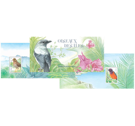 Souvenir - Oiseaux des îles