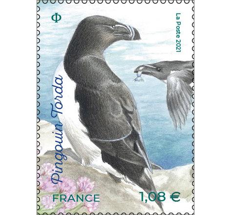 Timbre - Oiseaux des îles - Pingouin Torda - Lettre Verte