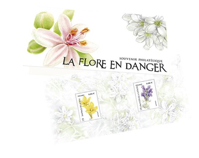 Souvenir - La Flore en Danger