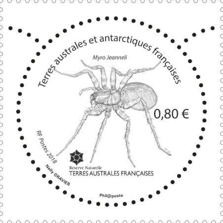 """Résultat de recherche d'images pour """"timbre Insecte de Crozet (Myro Jeanneli) terres Australes"""""""