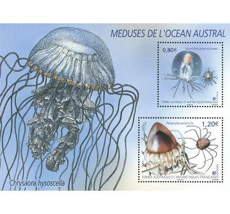TAAF - Bloc - Méduses de l'Océan austral