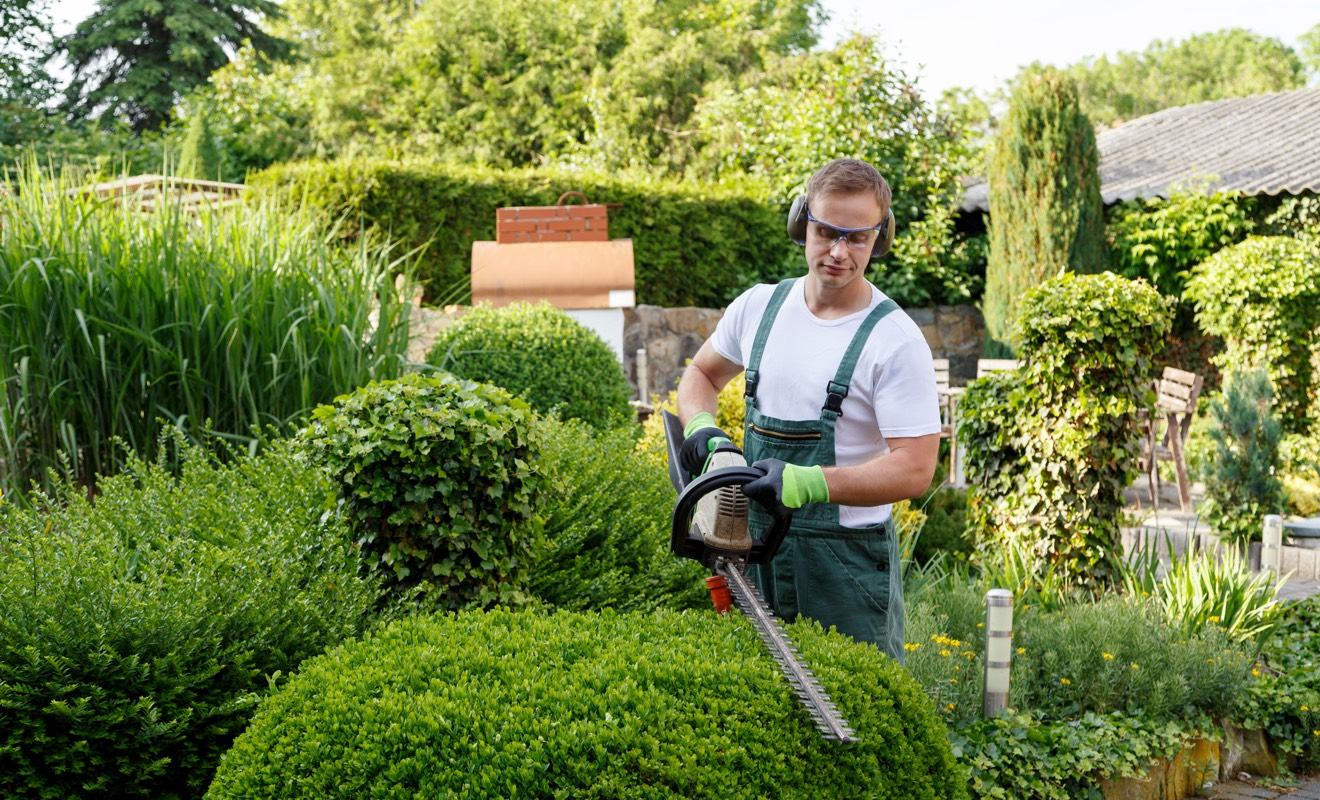 Jardinier à domicile & service de jardinage  La Poste