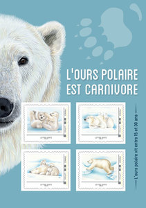 Agrandir l'image : Collector - Ours polaires