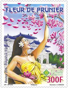 Polynésie Française - Fleur de Prunier