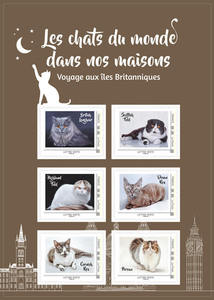 Agrandir l'image : Kit Collectors - Chats Continents