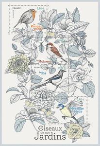 Bloc - Les oiseaux de nos jardins