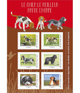 Agrandir l'image : Collector - Chiens Courants