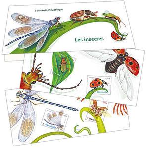 Souvenir - Les Insectes