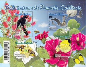 Nouvelle Calédonie - Bloc - Pollinisateurs de Nouvelle-Calédonie