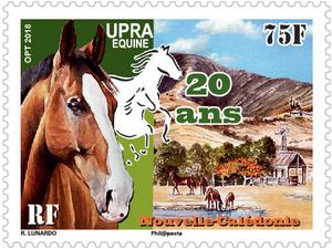 Nouvelle Calédonie - 20ème anniversaire de l'UPRA