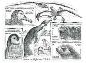 TAAF - Faune protégée des Terres Australes et Antarctiques Françaises