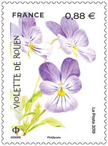 Timbre - La Flore en danger - Violette de Rouen