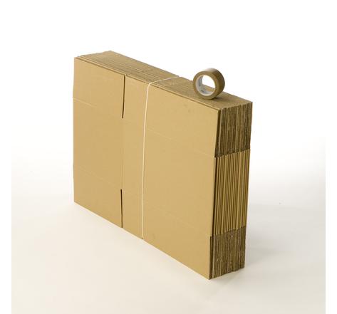 Kit 20 cartons standard avec 1 rouleau d'adhésif gratuit