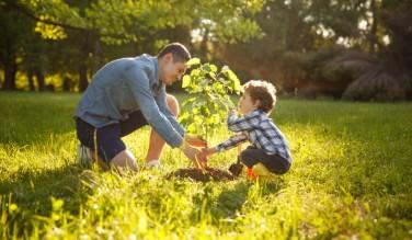 enfant qui joue dans un champs avec son père