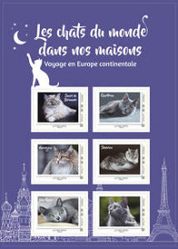 Collector - Chats Europe Continentale